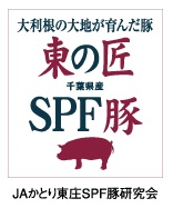 東の匠千葉県産SPF豚